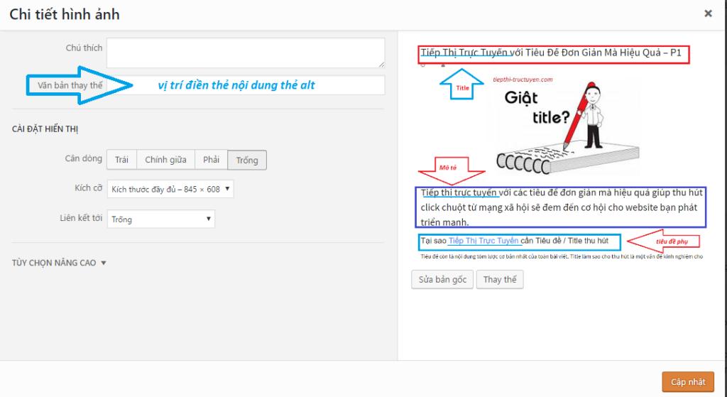 Thẻ alt cho hình ảnh có cần từ khóa hay không? SEO on-page hiệu quả hơn với từ khóa trong thẻ alt.
